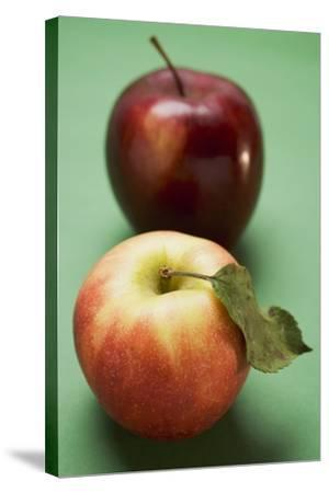 Two Different Apples (Varieties Elstar and Stark)-Foodcollection-Stretched Canvas Print