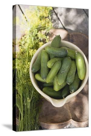 Pickling Cucumbers in Bowl, Fresh Dill Beside It-Foodcollection-Stretched Canvas Print