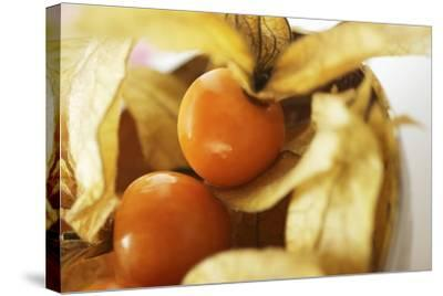 Physalis with Calyxes in a Bowl-Foodcollection-Stretched Canvas Print