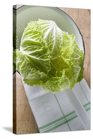 Fresh Chinese Cabbage in Colander-Foodcollection-Stretched Canvas Print
