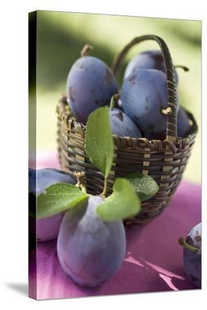 Fresh Plums in a Basket-Eising Studio - Food Photo and Video-Stretched Canvas Print