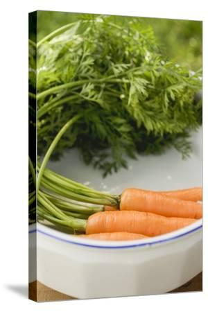 Fresh Carrots with Tops in White Dish-Foodcollection-Stretched Canvas Print