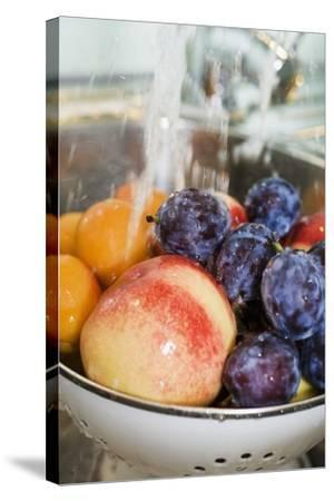 Washing, Plums, Peaches and Apricots-Eising Studio - Food Photo and Video-Stretched Canvas Print