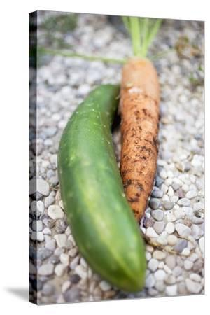 Braising Cucumber and Fresh Carrot-Foodcollection-Stretched Canvas Print