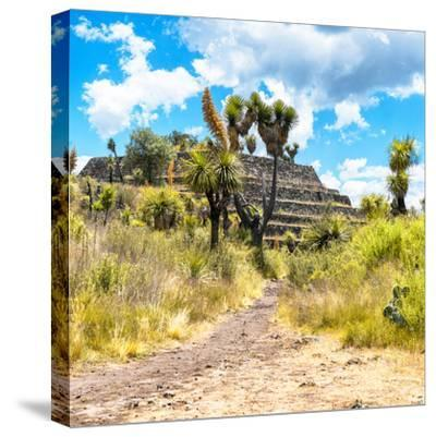 ¡Viva Mexico! Square Collection - Cantona Archaeological Ruins-Philippe Hugonnard-Stretched Canvas Print
