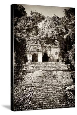 ¡Viva Mexico! B&W Collection - Mayan Ruins in Palenque III-Philippe Hugonnard-Stretched Canvas Print