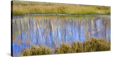 Utah, Dixie National Forest. Chriss Lake Landscape-Jaynes Gallery-Stretched Canvas Print