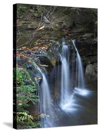 Cayuga Falls, Ricketts Glen State Park, Pennsylvania, Usa-Tim Fitzharris-Stretched Canvas Print
