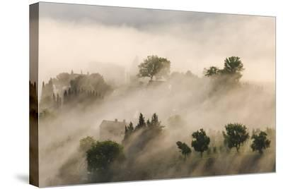 Italy, Tuscany. Morning Fog Drifting over Vineyards with Sun Breaking Through-Brenda Tharp-Stretched Canvas Print