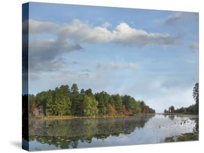 Millwood Lake, Millwood Lake State Park, Arkansas, Usa-Tim Fitzharris-Stretched Canvas Print