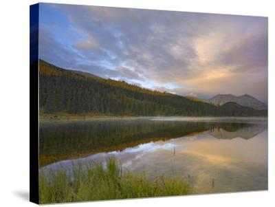 Northern Rocky Mountain Provincial Park, British Columbia, Canada-Tim Fitzharris-Stretched Canvas Print