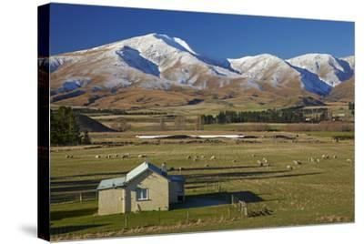 Old Farm Buildings and Kakanui Mountains, Maniototo, Central Otago, South Island, New Zealand-David Wall-Stretched Canvas Print