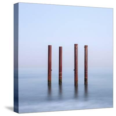 Quadra-Doug Chinnery-Stretched Canvas Print