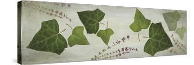 Heather and Ivy-Viviane Fedieu-Daniel-Stretched Canvas Print