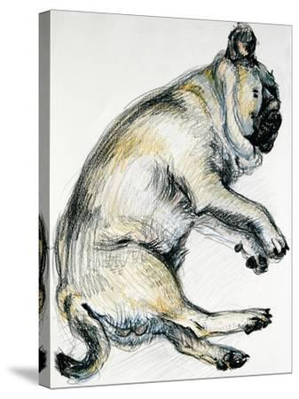 Sleeping Pug One, 2000-Joan Thewsey-Stretched Canvas Print