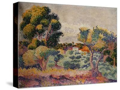 Eukalyptus und Olivenhain. 1907-Henri Edmond Cross-Stretched Canvas Print
