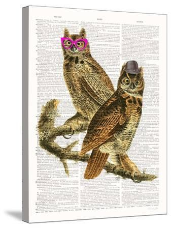 Whoo Are You Looking At ?-Christopher James-Stretched Canvas Print