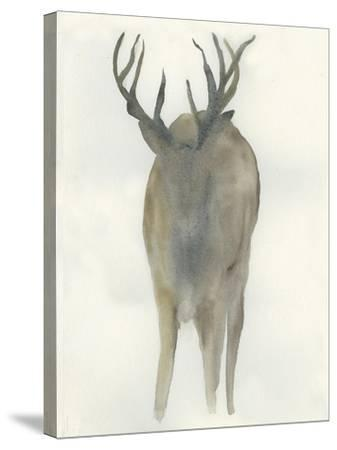 Solo Deer-Beverly Dyer-Stretched Canvas Print