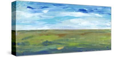 Vast Land II-Tim OToole-Stretched Canvas Print