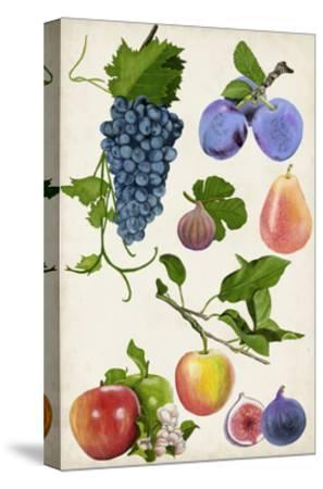 Fruit Collection II-Naomi McCavitt-Stretched Canvas Print