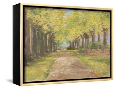 Fall Path III-Ethan Harper-Framed Stretched Canvas Print
