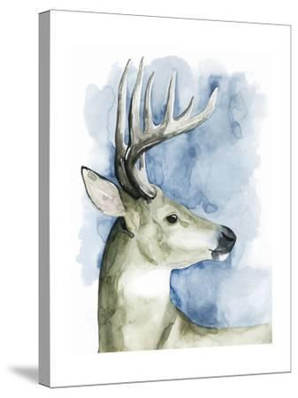 Wandering Stag II-Grace Popp-Stretched Canvas Print