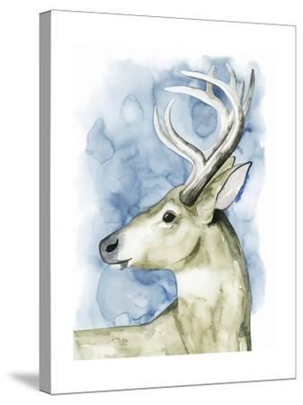 Wandering Stag I-Grace Popp-Stretched Canvas Print