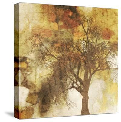 Autumn Colored II-Irena Orlov-Stretched Canvas Print