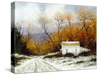 Winter Victorian-Miguel Dominguez-Stretched Canvas Print
