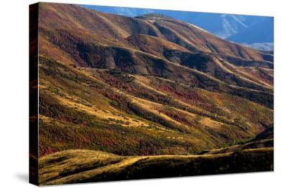 Mt. Nebo Loop Scenic Byway, Utah: This Byway Corsses The Uinta NF Between Nephi And Payson, Utah-Ian Shive-Stretched Canvas Print