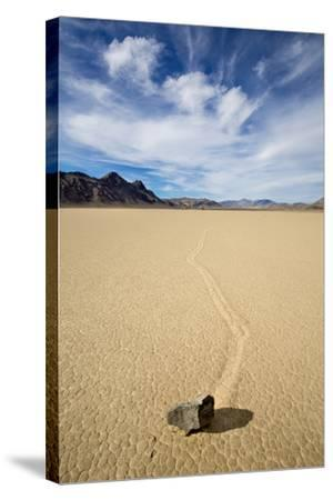 "Death Valley National Park, CA: ""Moving"" Rocks Of The Famous Racetrack-Ian Shive-Stretched Canvas Print"