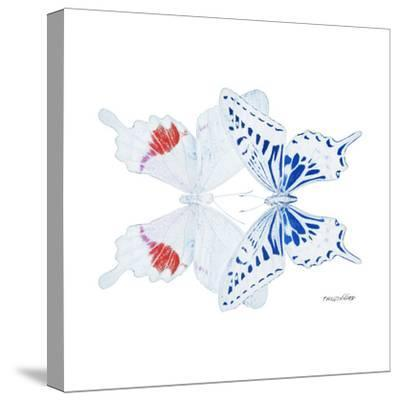 Miss Butterfly Duo Parisuthus Sq - X-Ray White Edition-Philippe Hugonnard-Stretched Canvas Print