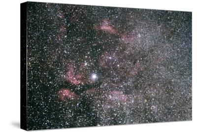 The Sadr Region Of Cygnus, Including IC 1318 And The Crescent Nebula-Mike Cavaroc-Stretched Canvas Print