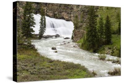 Granite Falls Along Granite Creek, Bridger-Teton National Forest, Wyoming-Mike Cavaroc-Stretched Canvas Print