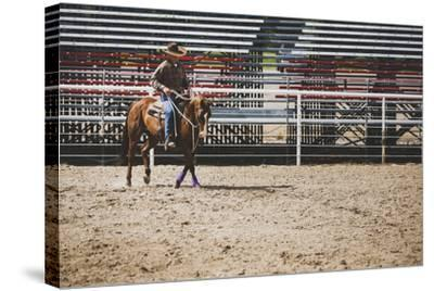 Brian Billings Exercising His Horse At The Oakley Rodeo Grounds, Oakley, Utah-Louis Arevalo-Stretched Canvas Print
