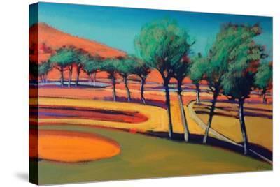 Son Vida III-Paul Powis-Stretched Canvas Print