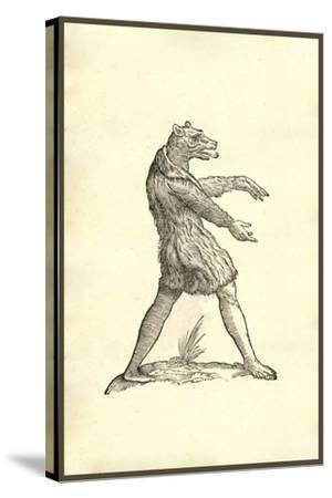 Cynocephali Effigies-Ulisse Aldrovandi-Stretched Canvas Print