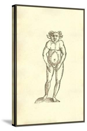 Monstrum Humanum Coribus Arietinis-Ulisse Aldrovandi-Stretched Canvas Print