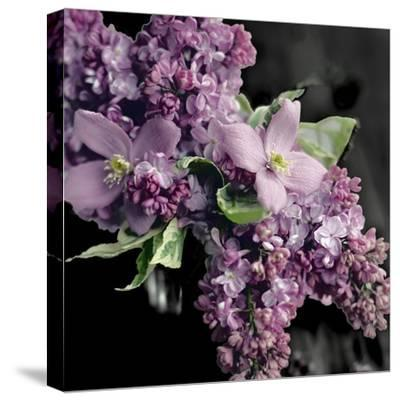 Fresh Evening Bloom-Sarah Gardner-Stretched Canvas Print