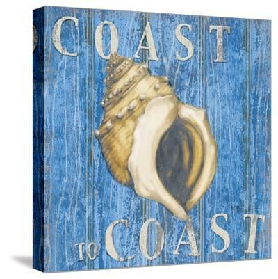 Coastal USA Conch-Paul Brent-Stretched Canvas Print