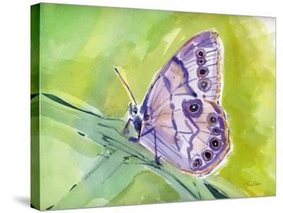 Watercolor Butterfly IV-LuAnn Roberto-Stretched Canvas Print