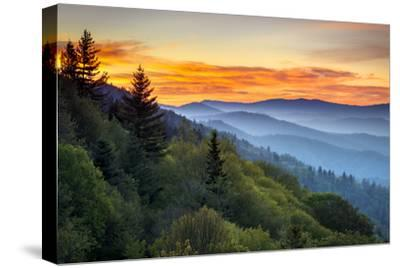 Great Smoky Mountains National Park Scenic Sunrise Landscape at Oconaluftee Overlook between Cherok-Dave Allen Photography-Stretched Canvas Print