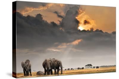 African Sunset with Elephants-Oleg Znamenskiy-Stretched Canvas Print