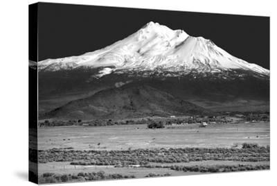 Shasta County Spring BW-Douglas Taylor-Stretched Canvas Print