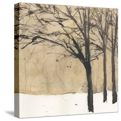 Forest Sketch II-Samuel Dixon-Stretched Canvas Print