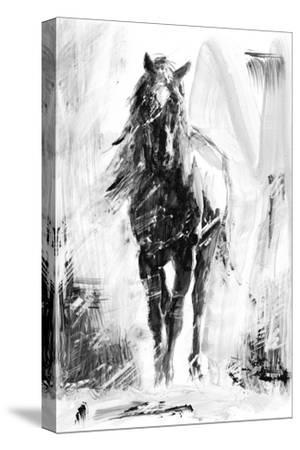 Rustic Stallion II-Ethan Harper-Stretched Canvas Print