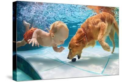 Funny Little Child Play with Fun and Train Golden Labrador Retriever Puppy in Swimming Pool, Jump A-Tropical studio-Stretched Canvas Print