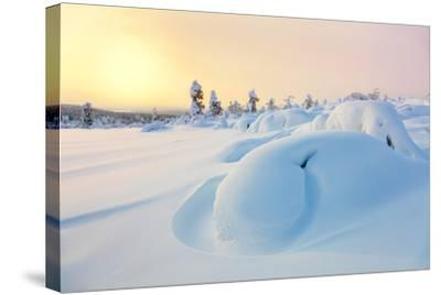 Beautiful Northern Winter Landscape - Sunset, Snow Covered Pine Trees and Big Snowbanks-Taiga-Stretched Canvas Print