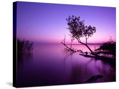 Sunset Lake. this Photo Make in Hungary. Sunset Whit Balaton-hofhauser-Stretched Canvas Print