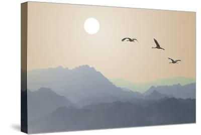 Migrating Cranes to the Sun over the Mountains-Protasov AN-Stretched Canvas Print